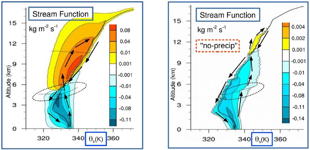 Isentropic streamfunctions of very deep Hector using theta_s with and without precipitation